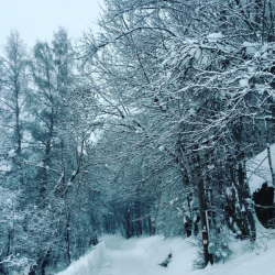 Départ pistes de ski de fond au pied de la Maison GAUTHIER