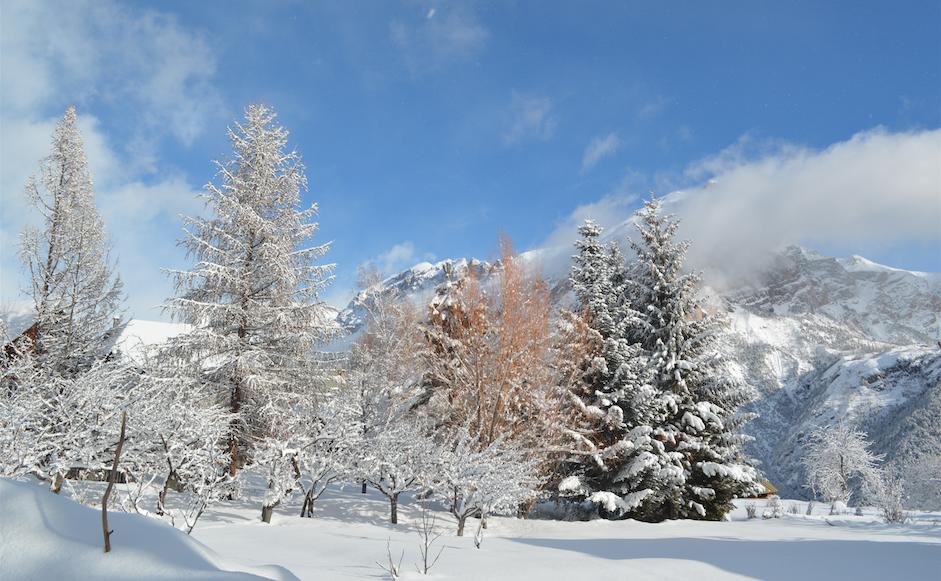 Lendemain de chutes de neige 1